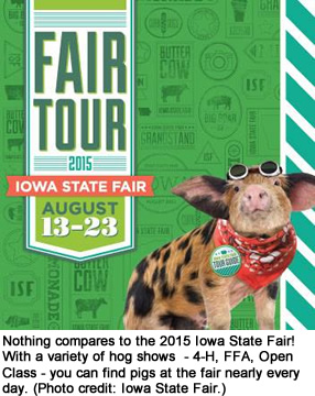 Nothing compares to the 2015 Iowa State Fair! With a variety of hog shows  — 4-H, FFA, Open Class — you can find pigs at the fair  nearly every day. (Photo credit: Iowa State Fair.)