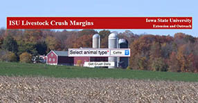 Crush Margin App opening screen