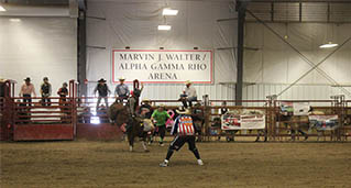 BUll riding entry at Tuff-N-Nuff Miniature Rodeo held September 2017 at Jeff and Deb Hansen Ag Student Learning Center at ISU