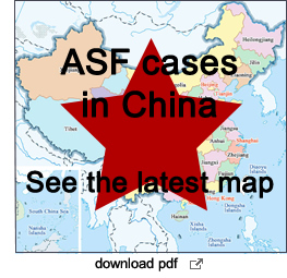 map of ASF in China