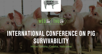 pig survivability conference graphic